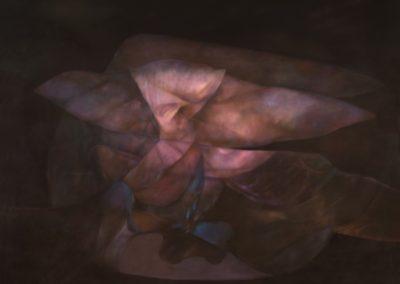 Ave inventando la ausencia, 1992, oil on canvas, 68×98″