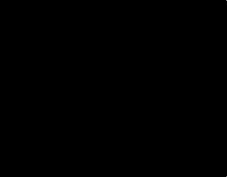 RAFAEL SORIANO FOUNDATION